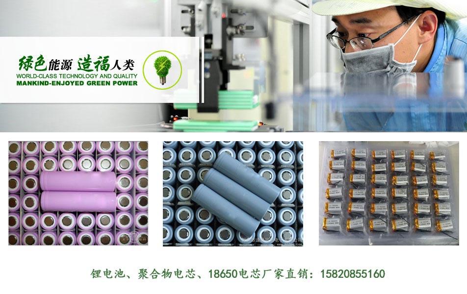 聚合物电池厂家展示